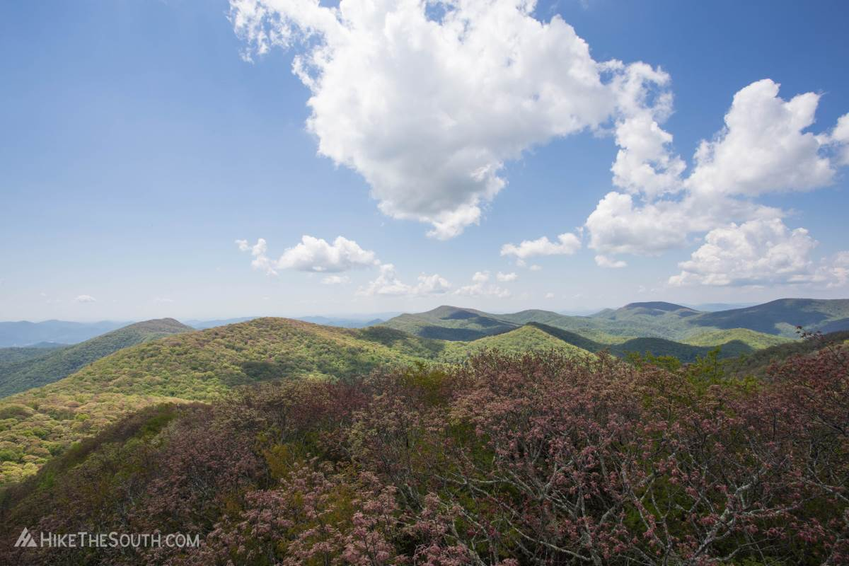 Albert Mountain. 