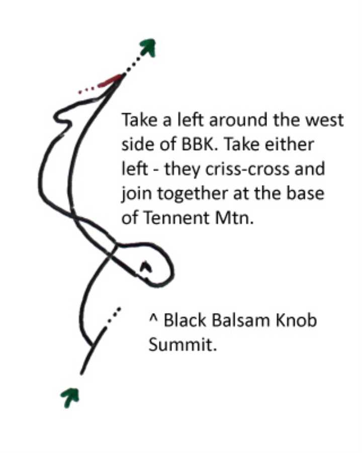 **This does not replace a map.** On the approach to Black Balsam Knob, turn left at the wooden post. You will come to a crossing and then a dead end. Taking either trail to the left will criss-cross and eventually rejoin at the base of Tennent Mountain. Taking either right will form a short loop to the top of BBK, definitely worth the short side trip.