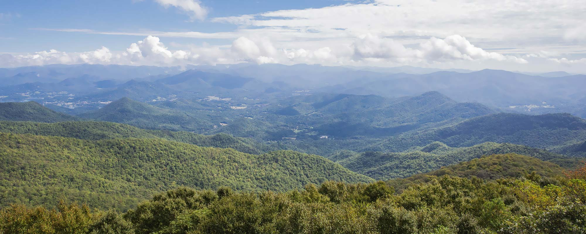 Brasstown Bald Summit Trail