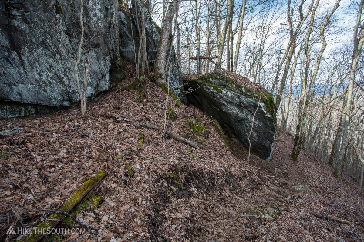 Cheoah Bald via Stecoah Gap. 