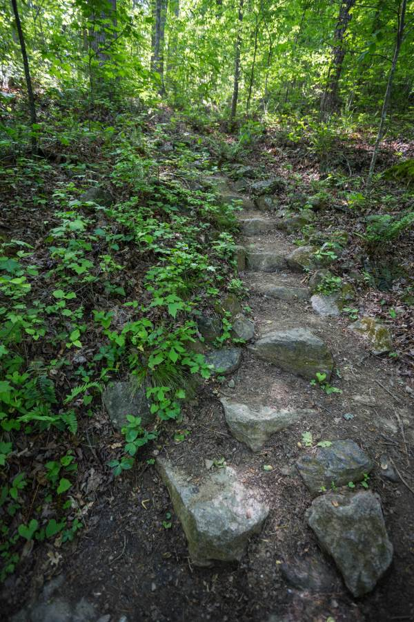 Chicopee Woods Bridge and Lake Loop. 