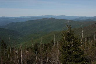 Clingmans Dome Loop