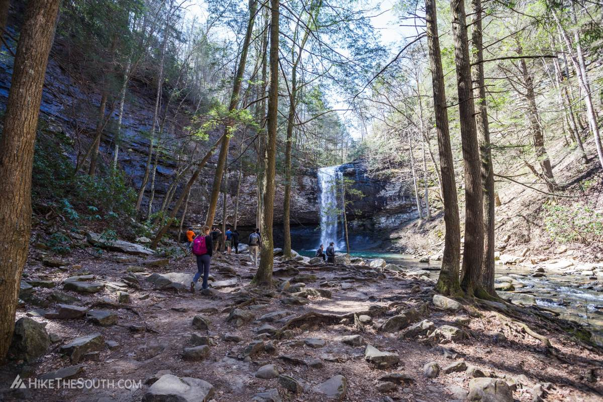 Cloudland Canyon Sitton's Gulch and Waterfalls Trails. 