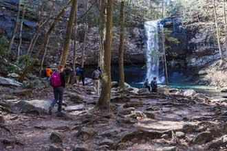 Cloudland Canyon Waterfalls Trail