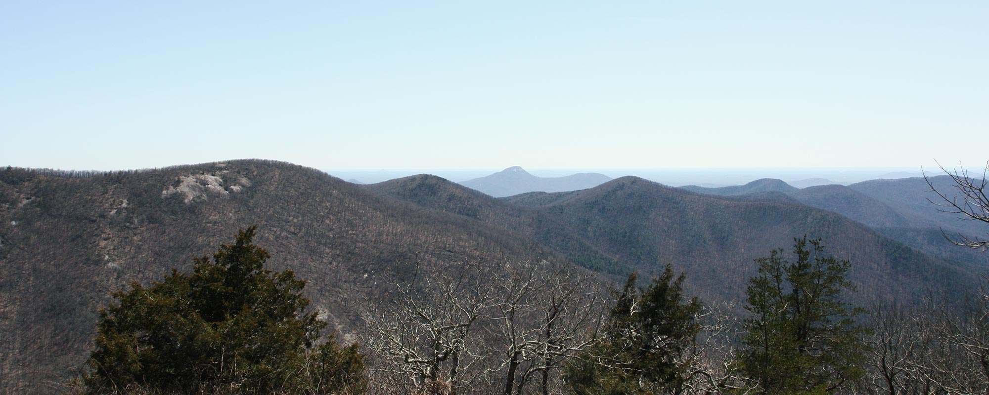 Cowrock Mountain via Tesnatee Gap