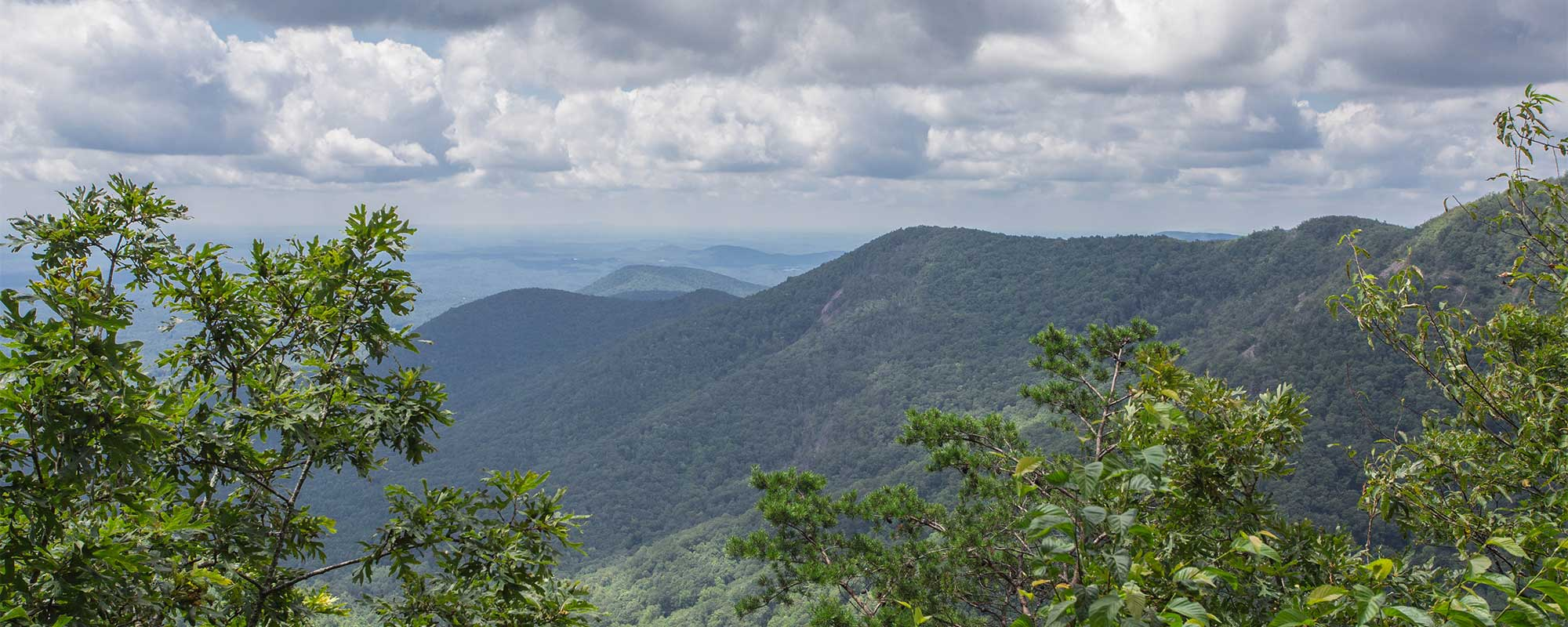 Cowrock Mountain via Hogpen Gap