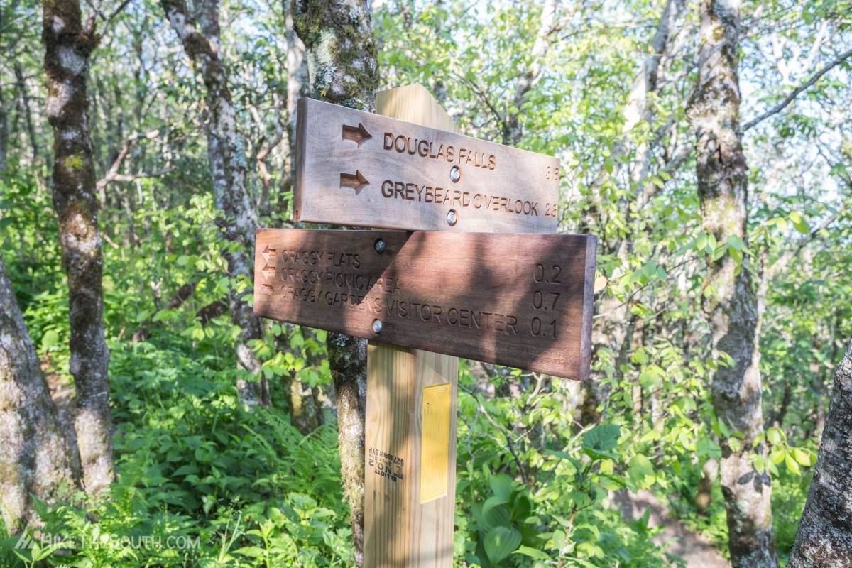 Craggy Gardens. 