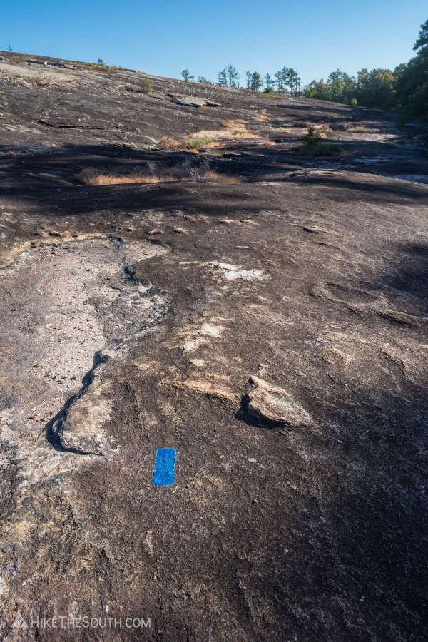 Arabia Mountain Top and Mountain View Loop. 