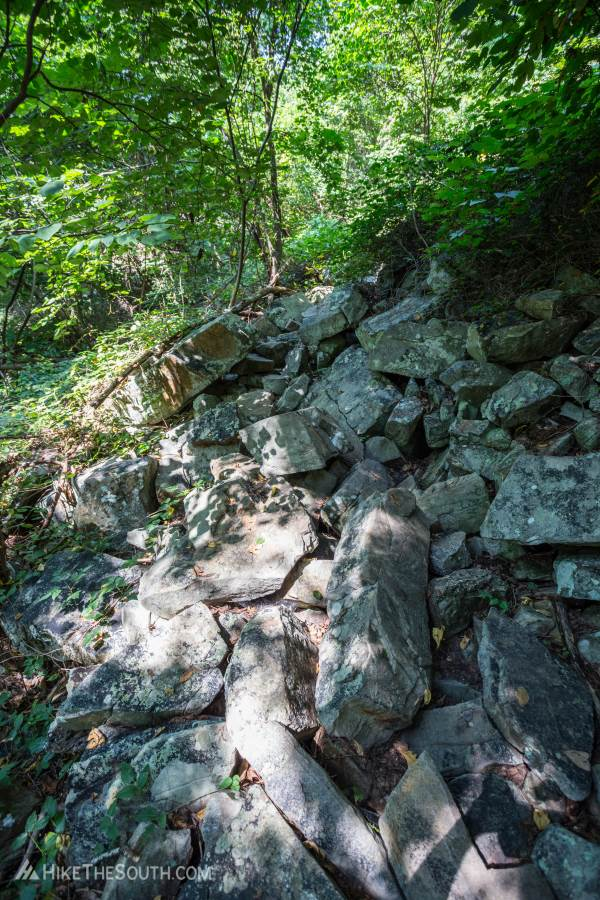 Foster Falls Climber's Loop. 