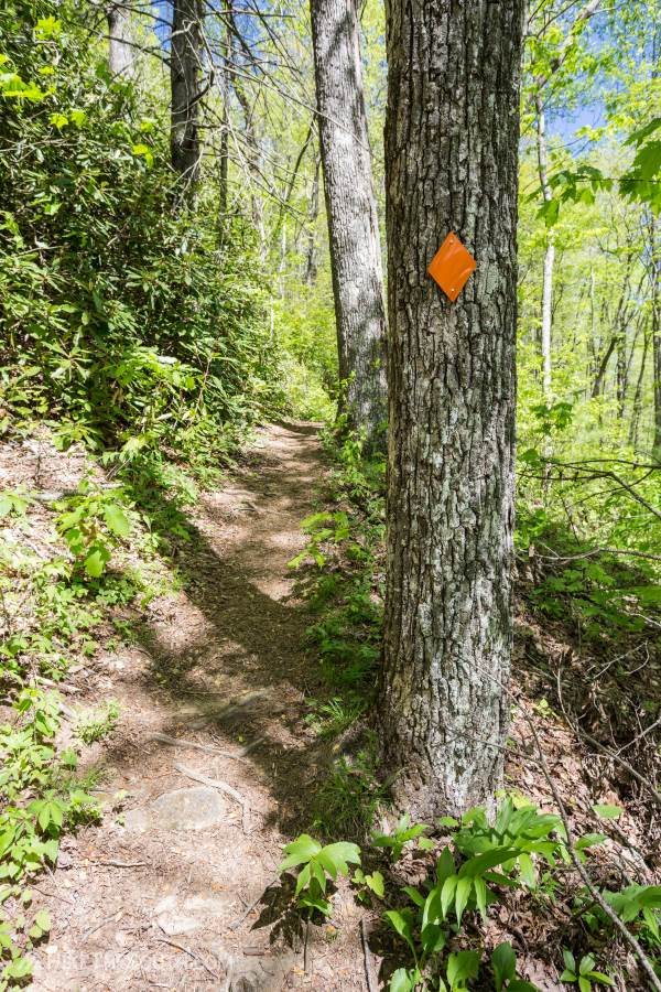 James E. Edmonds Backcountry Trail. 