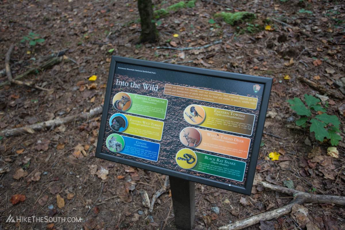 Kennesaw Mountain Environmental Loop & 24 Gun Trail. 