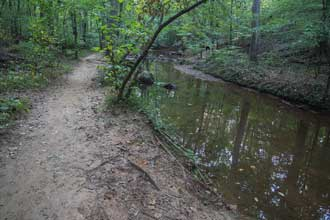 Kennesaw Mountain Noses Creek Loop