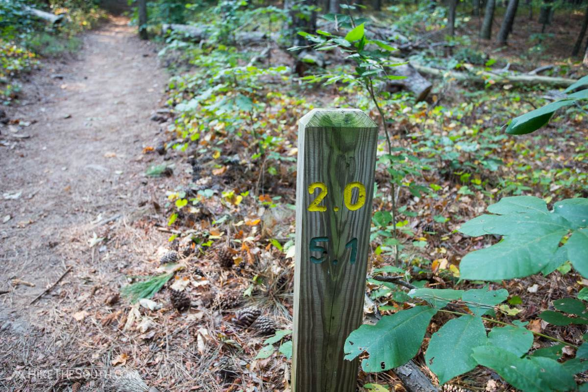 Kennesaw Mountain Noses Creek Loop. 