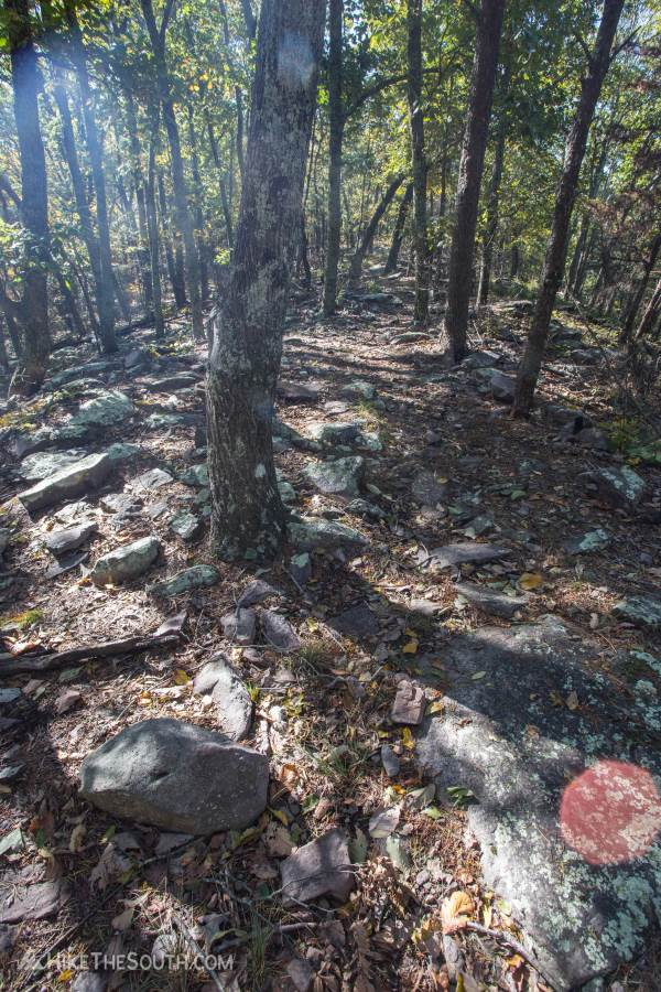 Keown Falls & Johns Mountain Double Loop. 
