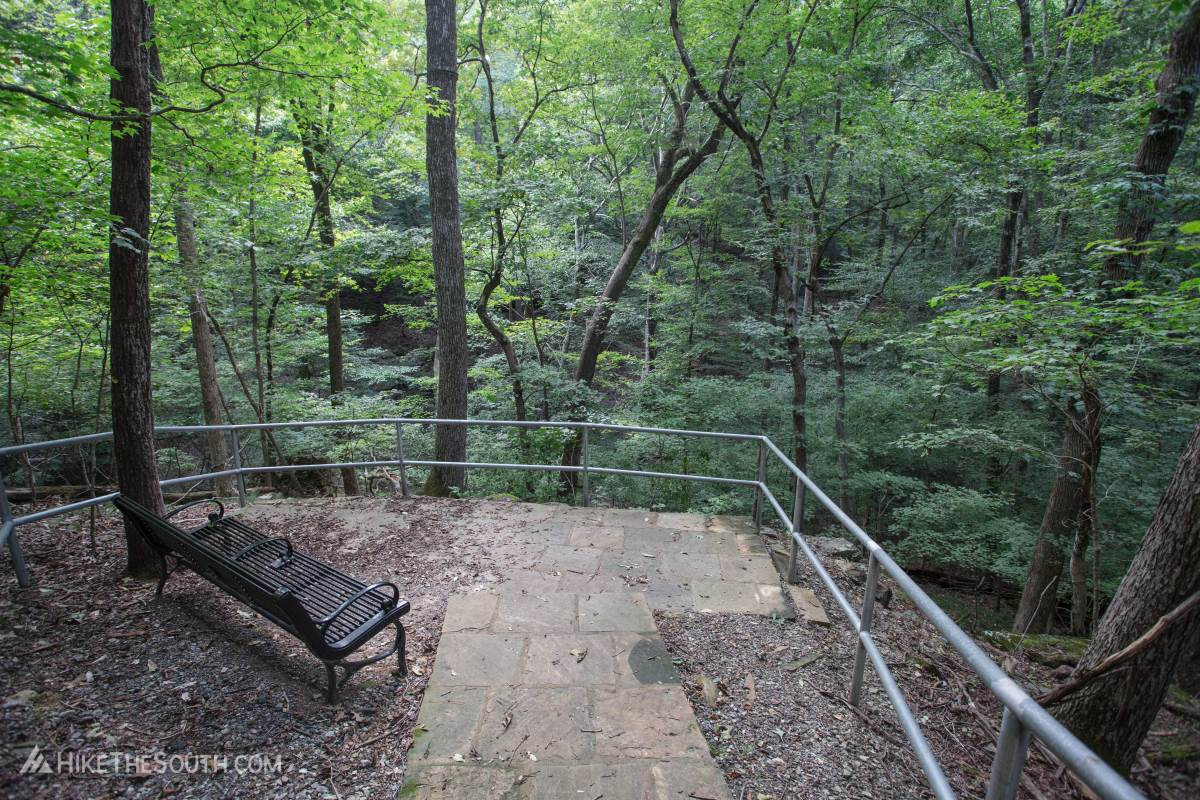 Little Mulberry Ravine, Woodland, and Beech Tree Loop. 