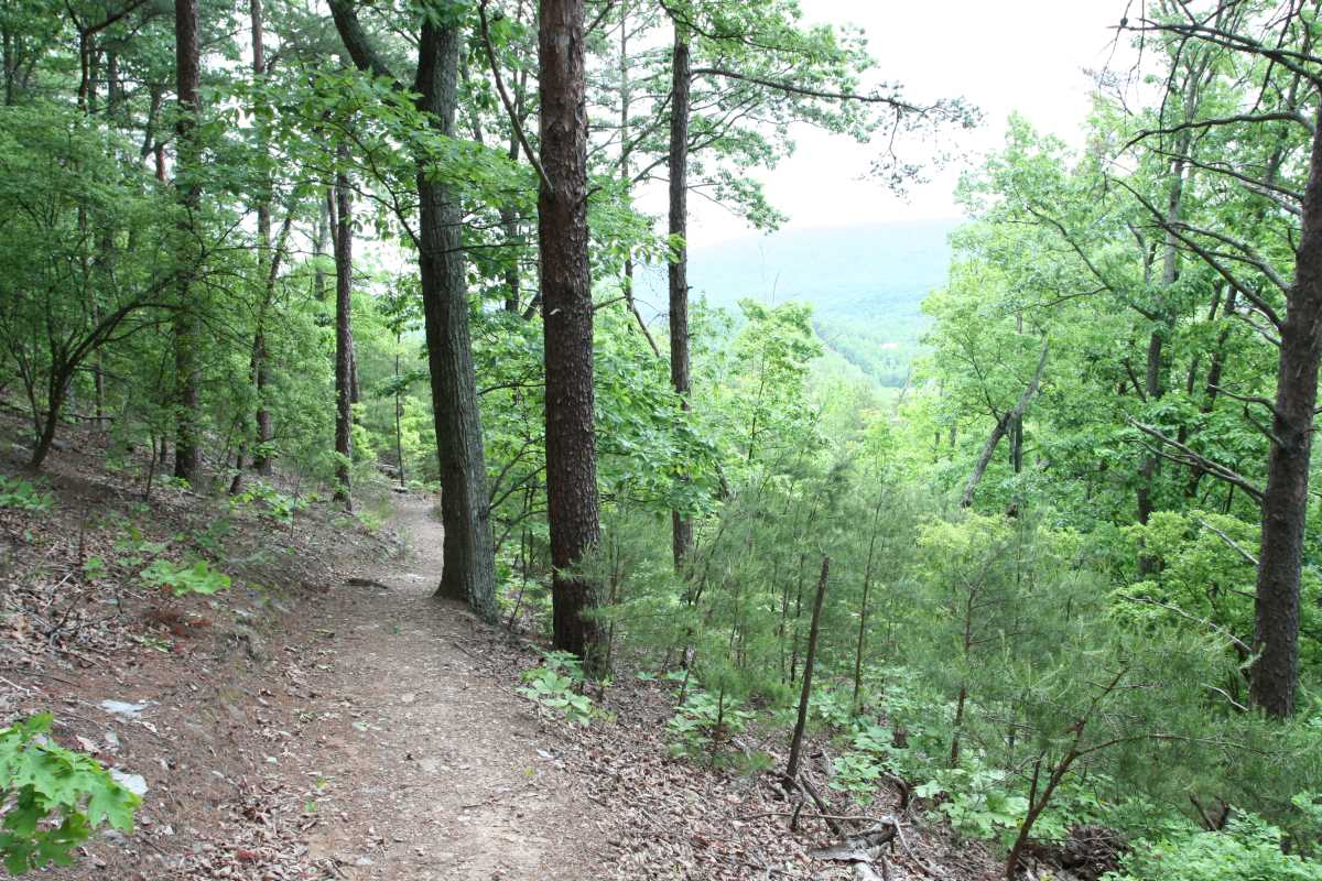 Pine log creek trail system hikethesouth - Pinne dive system ...