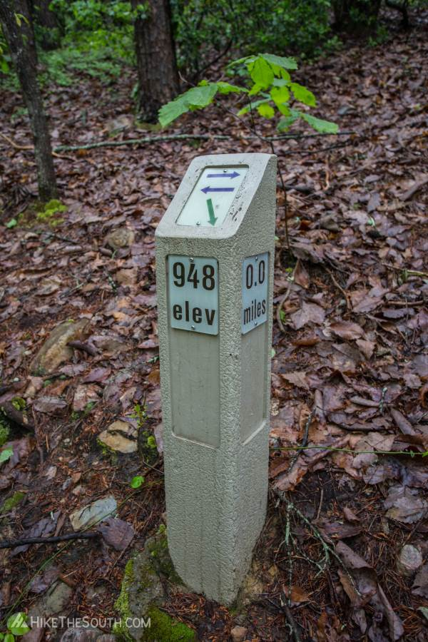 Pine Mountain West Loop. 
