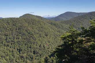 Pinnacle Knob via Courthouse Gap