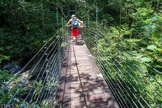 Raven Cliff Falls Suspension Bridge