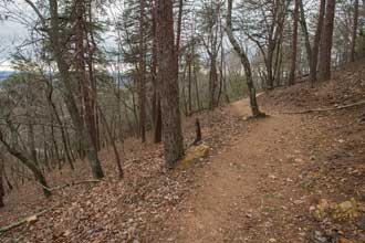 Sawnee Mountainside Trail System