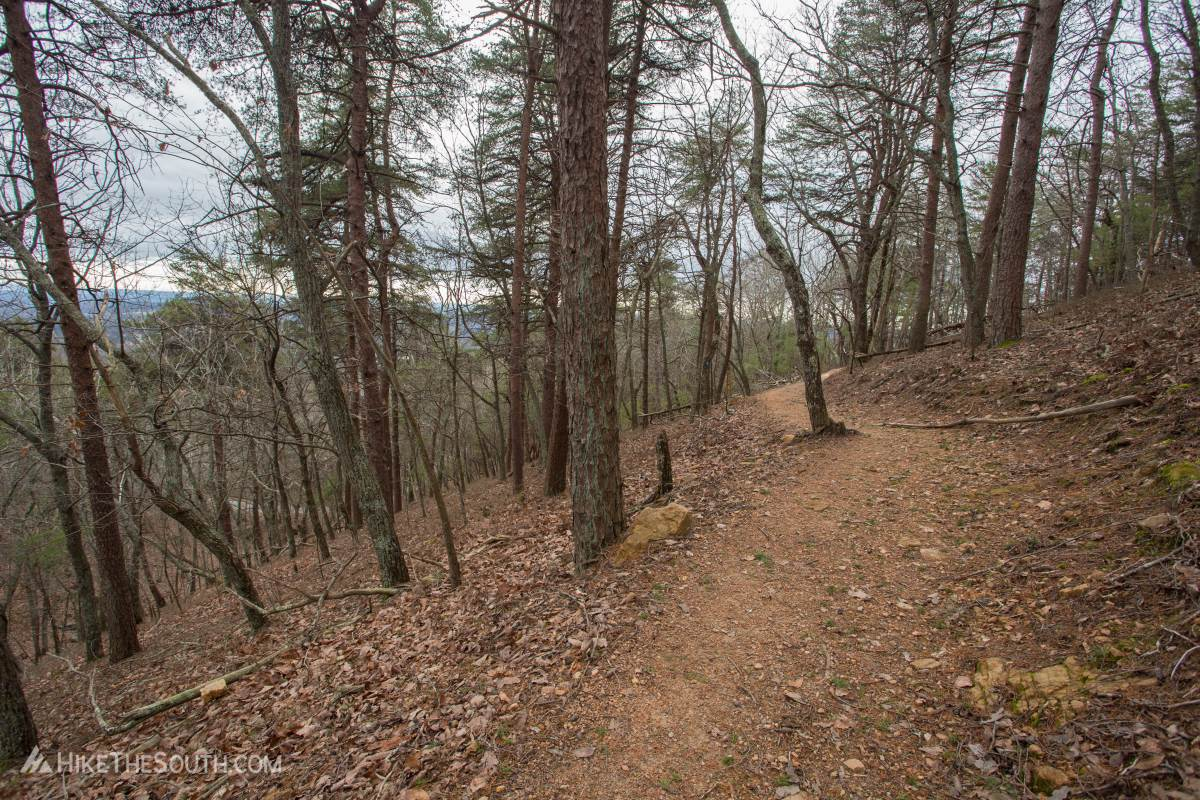 Sawnee Mountainside Trail System. 
