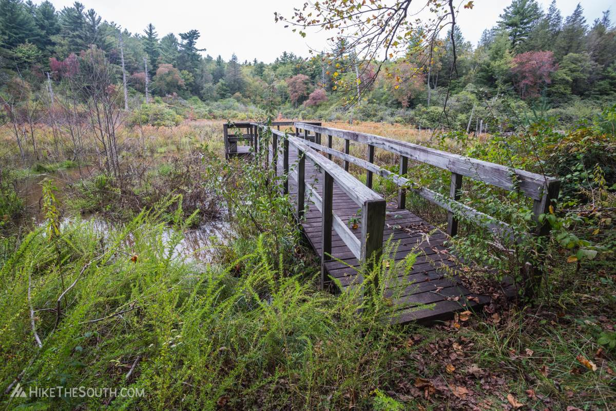 Songbird Trail. 