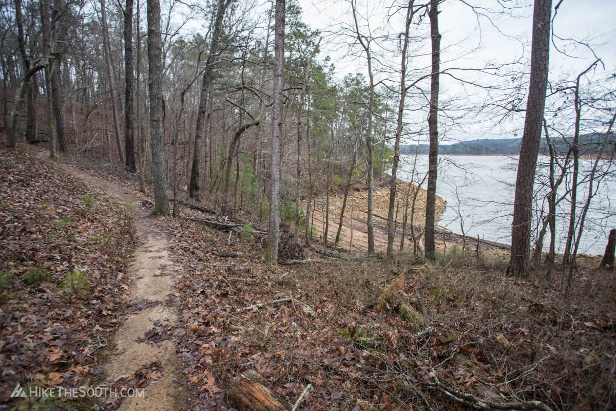 Vineyard Mountain Eagle Scout Trails. 