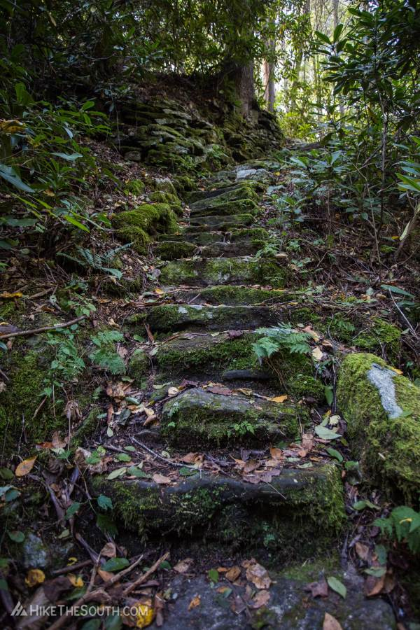 Warwoman Dell Trail System. 